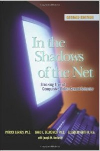 In the Shadows of the Net book cover