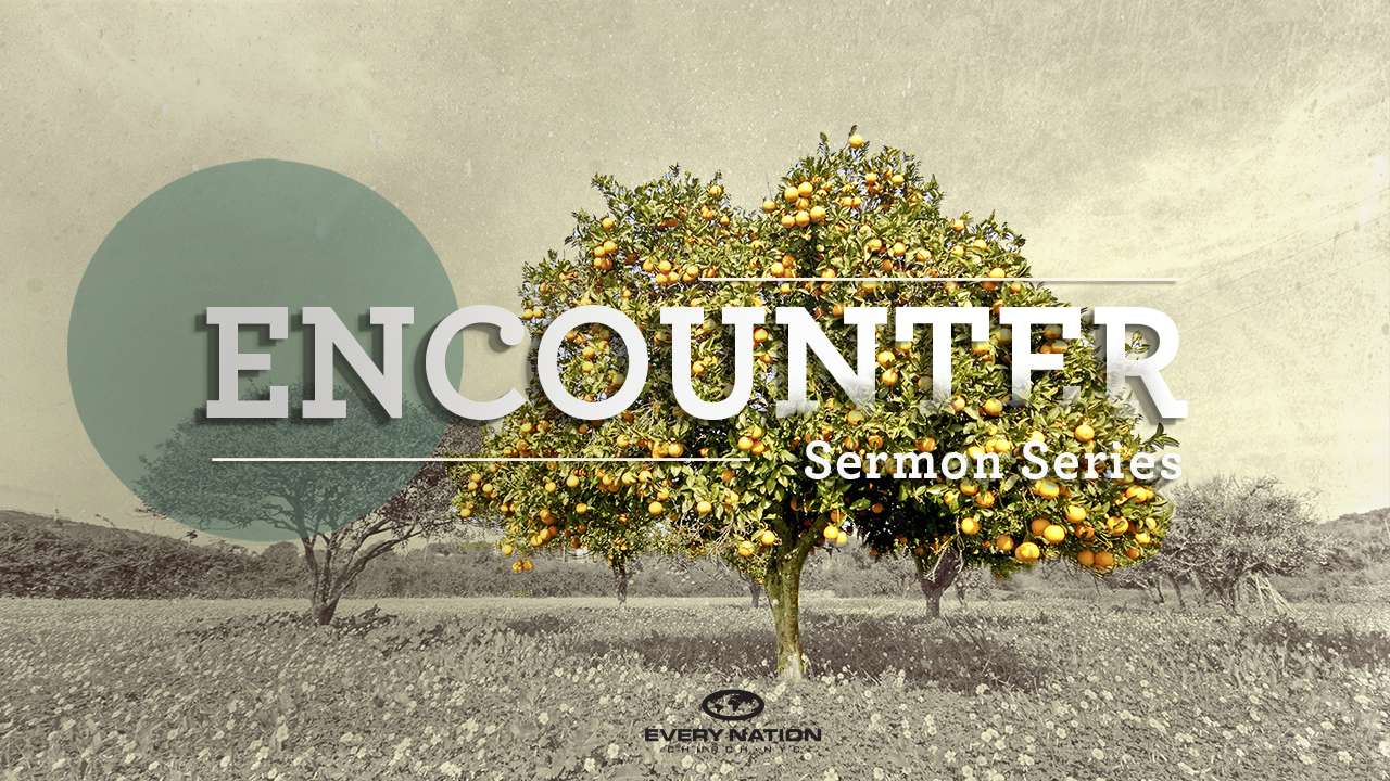 Encounter Series – Connect Group Study Guides