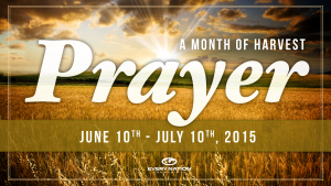 Month of Harvest Prayer for CityFest